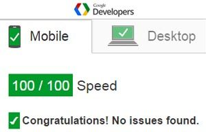 google-page-speed-insights-service